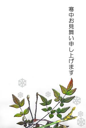 2013寒中見舞2.jpg