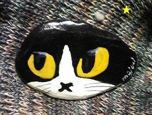 stonecat12-bak.jpg