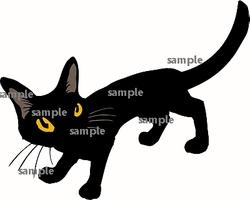 YAblackcat1smpl1.jpg