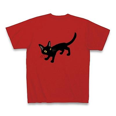 blackcatT.jpg