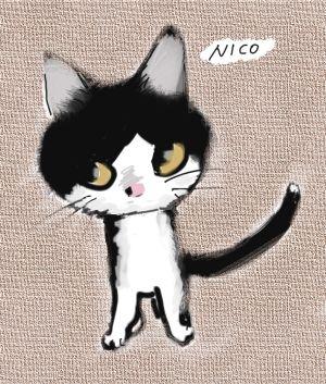 nico-bk.jpg