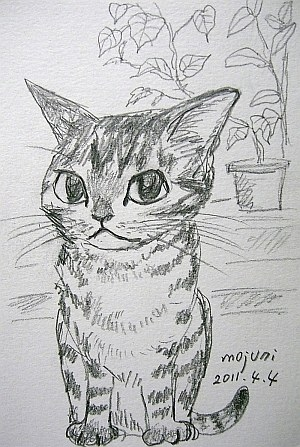 pencilcat20110404.jpg